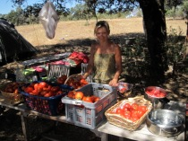 vegetable market at home